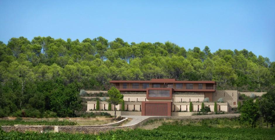 Domaine viticole : étude de projet